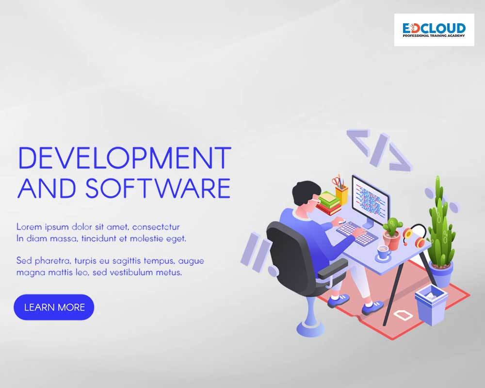 Development and Software