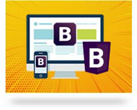 professional Web designing training